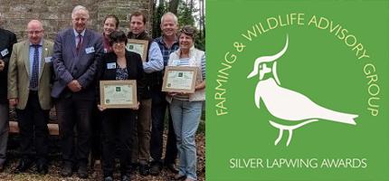 Silver Lapwing Awards
