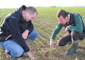 The Value Of Agronomy+ - Farm case studies from Agrii