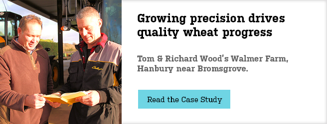 Growing-precision-drives-quality-wheat-progress-main-banner