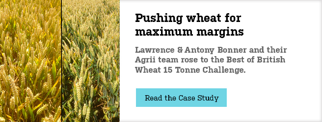 pushing-for-wheat-landing