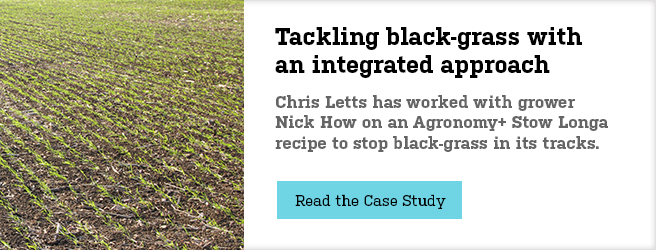 Tackling black-grass with an integrated approach