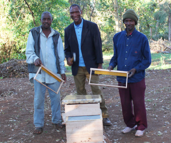 Tanzanian farmers stand in front of a beehive