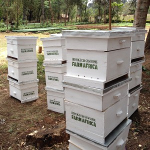 Some of the finished beehives