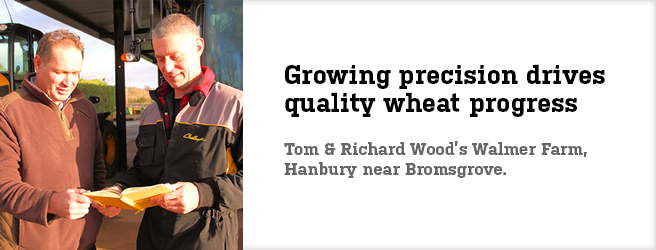 Growing precision drives quality wheat progress