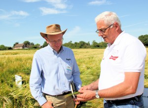 Gary Hanning (R) and Colin Patrick discuss Budweiser barley varieties on UK testing