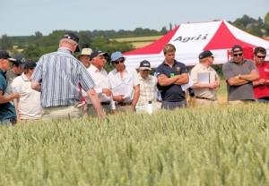 Throws Farm plot tour