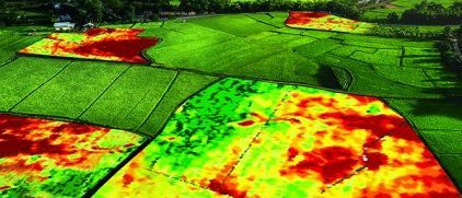 Digital Technology Farms
