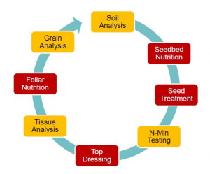 Figure 1: The Agrii Tailored Nutrition Approach