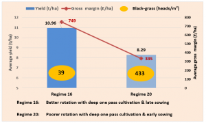 Figure 3: 2019 Stow Longa Second Wheat Performance Comparisons (Best vs Worst)