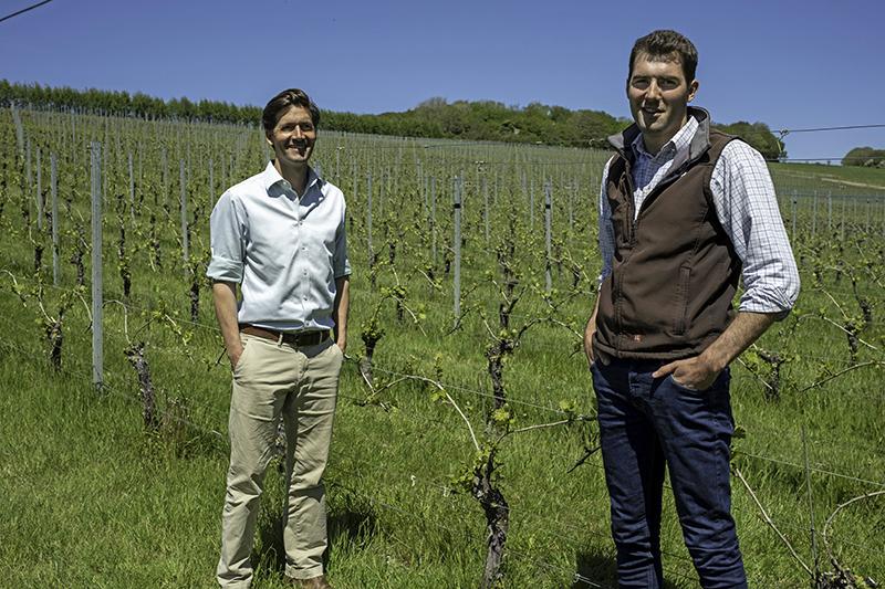 Vine spacialist Ben Brown of Agrii with Wiston Estates Richard Goring